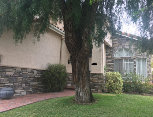 Stone Veneer and Stucco Repairs in Rancho Penasquitos